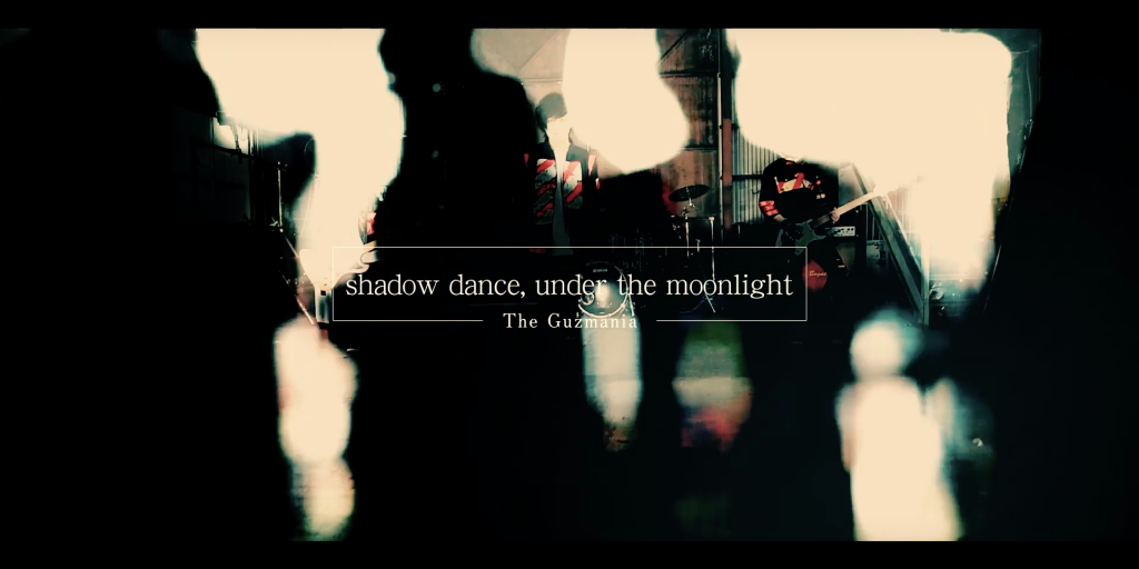 The Guzmania「shadow dance, under the moonlight」